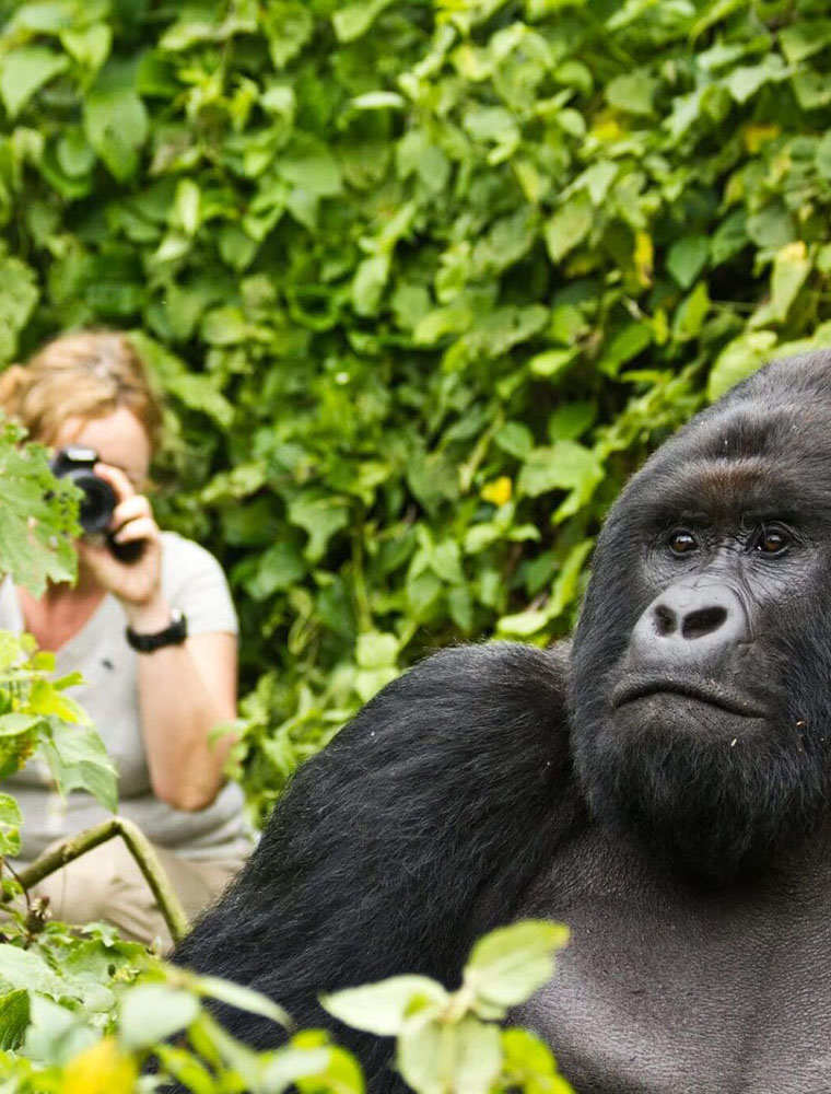 Group Uganda Safaris